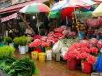 dangwa flower market