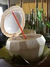buko juice coconut water