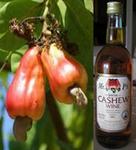 cashew recipes