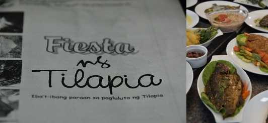 tilapia recipes - fiesta ng tilapia