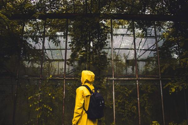 The Greenhouse Effect: How to Start Growing Your Greenhouse 1