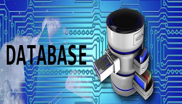 The perfect method of handling databases to ensure seamless management 1