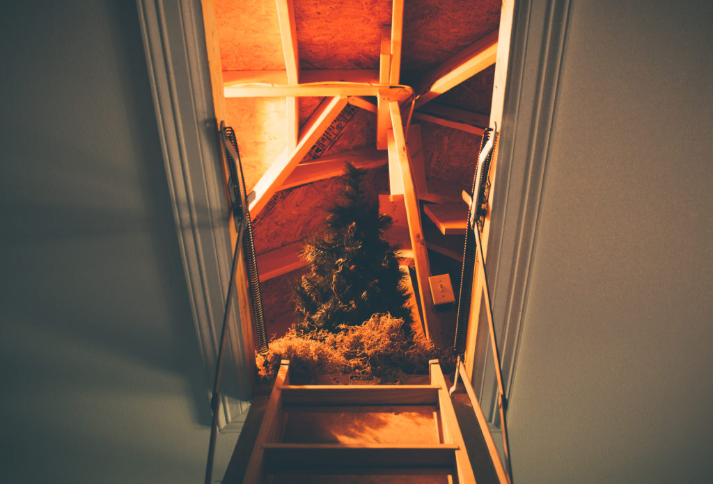 3 Tips To Finding The Best Attic Restoration Services In Florida 1