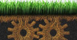 grassroots-marketing-2 3