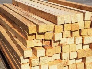 timber-plantations