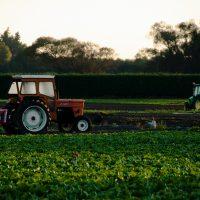 agricultural management orange tractor