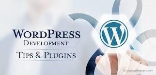 WordPress development tips and practices 1