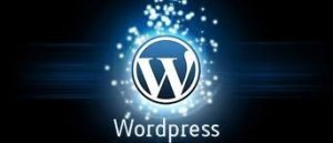wordpress-development-3 3