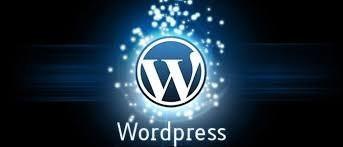 wordpress development 3