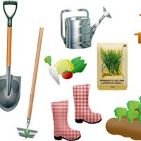 must have gardening equipments