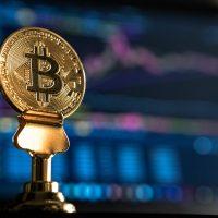 bitcoin selective focus photo of Bitcoin near monitor