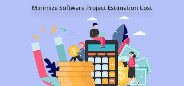 software project estimation cost