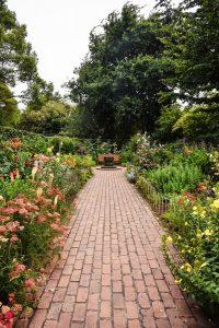 garden brown brick pathway between green plants during daytime