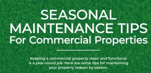 seasonal maintenance tips