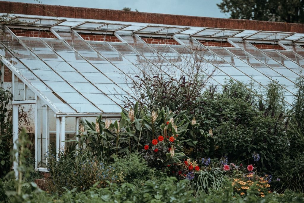Essential Thing to Know About Polycarbonate Roofing 1