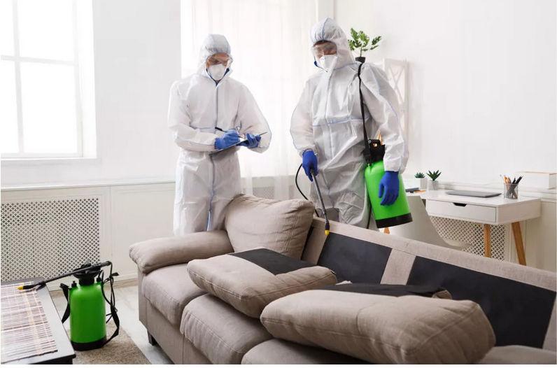 biohazard cleanup services