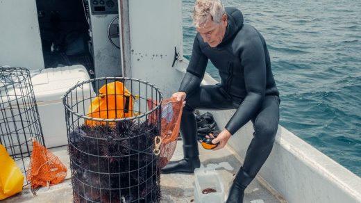 scuba diving gear business
