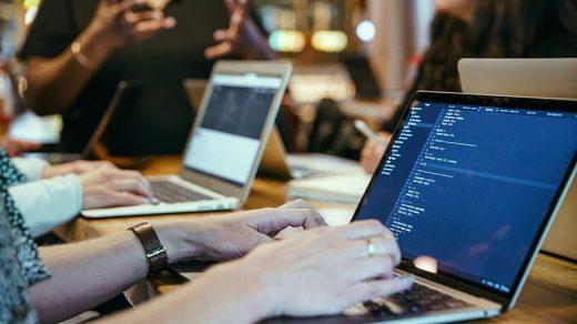 Web Development or Software Development