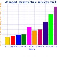 Managed Infrastructure Services Market